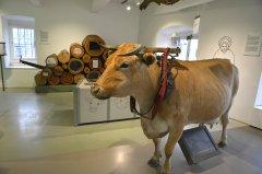 Eifelmuseum_ARN4827.jpg